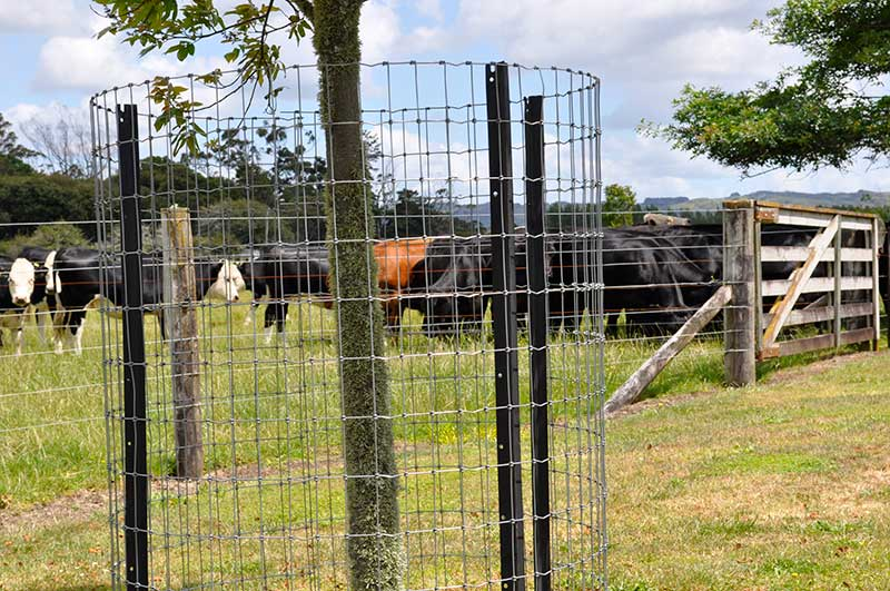 New Zealand Fabricated Netting Fence For Fencing Trees